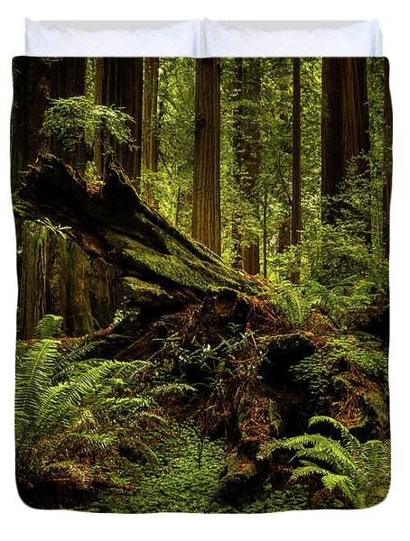 Old Growth Forest Duvet Cover