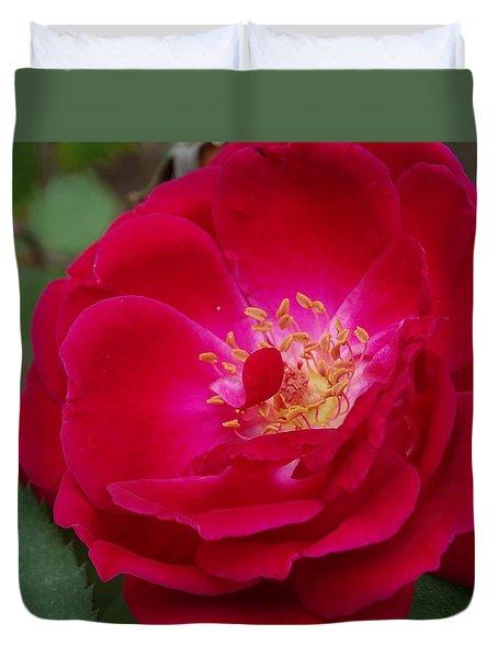 Old Homestead Rose Duvet Cover