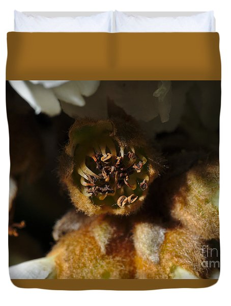 Old Loquat Tree Flower Duvet Cover
