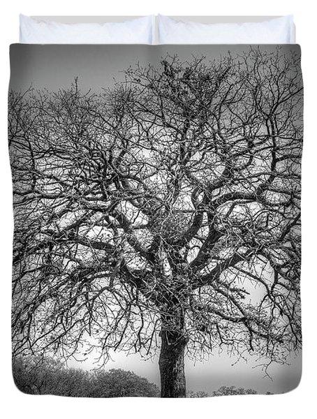 Old Oak Duvet Cover