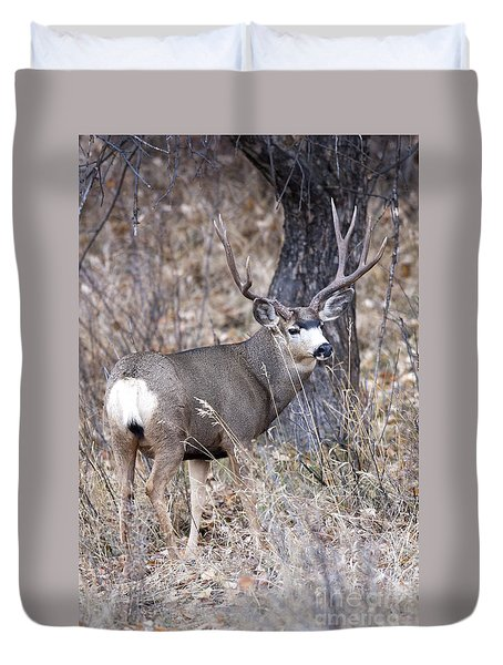 Old Orchard II Duvet Cover