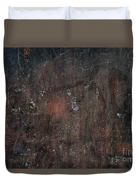 Duvet Cover featuring the photograph Old Plastered And Painted Wall by Elena Elisseeva