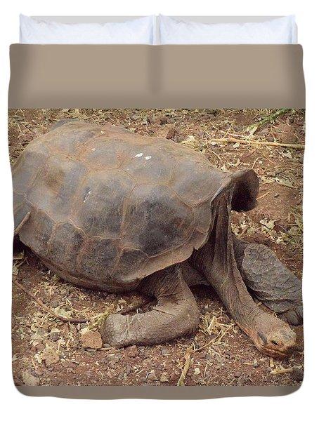 Old Tortoise Duvet Cover