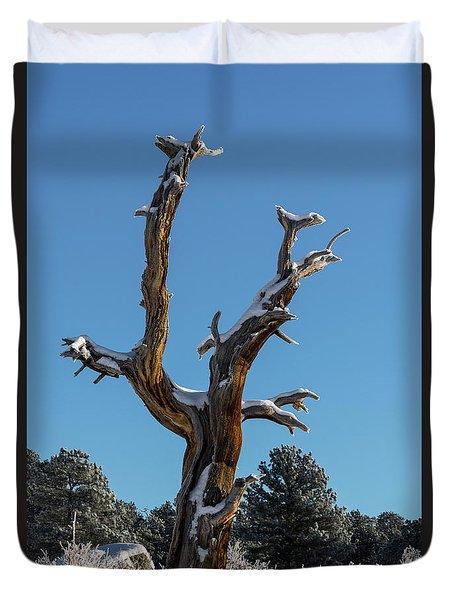 Old Tree - 9167 Duvet Cover