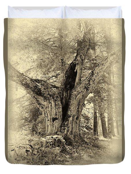Old Tree  Duvet Cover