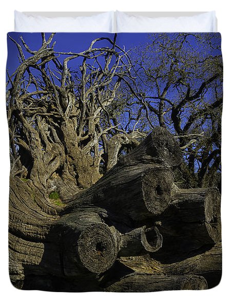 Old Tree Roots Duvet Cover