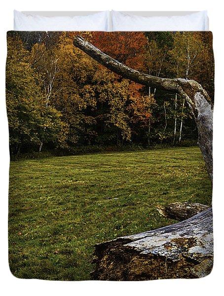 Old Tree Trunk Duvet Cover