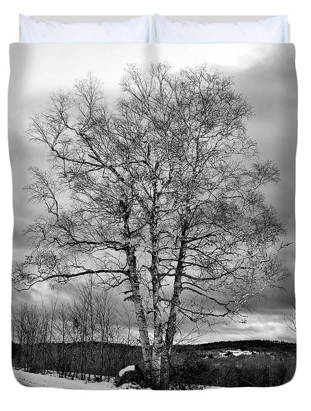 Old White Birch Duvet Cover by Betty Pauwels