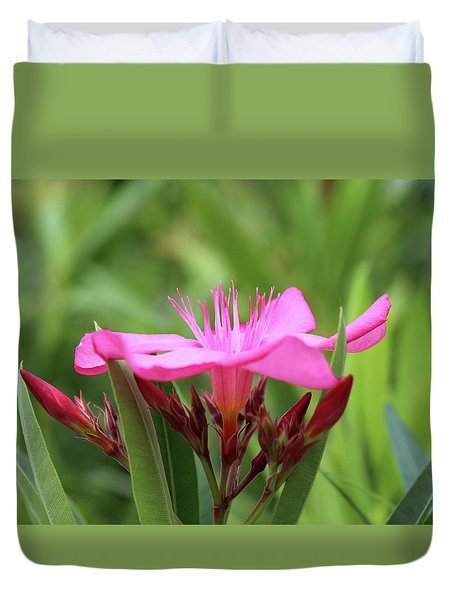 Duvet Cover featuring the photograph Oleander Professor Parlatore 1 by Wilhelm Hufnagl