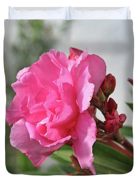 Oleander Splendens Giganteum 4 Duvet Cover