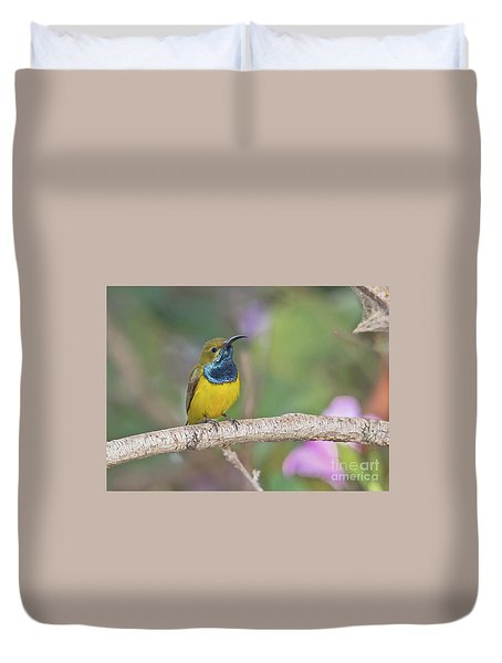 Olive-backed Sunbird Duvet Cover
