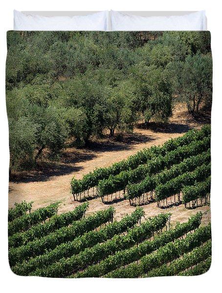 Olive Grove Meets Vineyard Duvet Cover