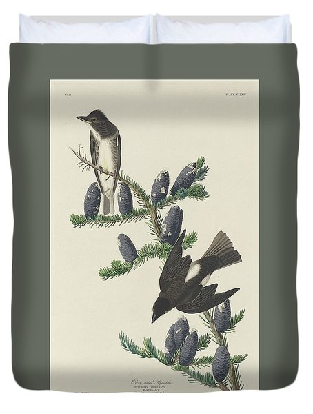Olive-sided Flycatcher Duvet Cover by Anton Oreshkin