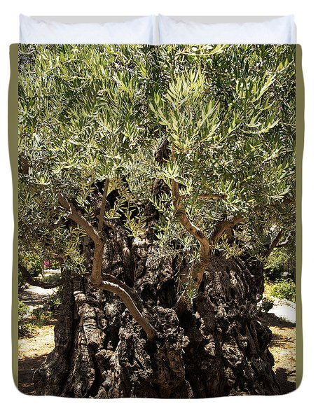 Duvet Cover featuring the photograph Olive Tree by Mae Wertz