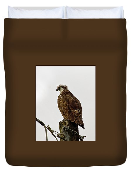 Ollie, The Osprey Duvet Cover