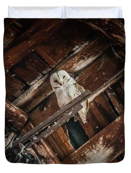 Olsen Barn Owls Duvet Cover