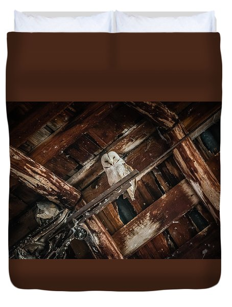 Olsen Barn Owls Duvet Cover by Jan Davies