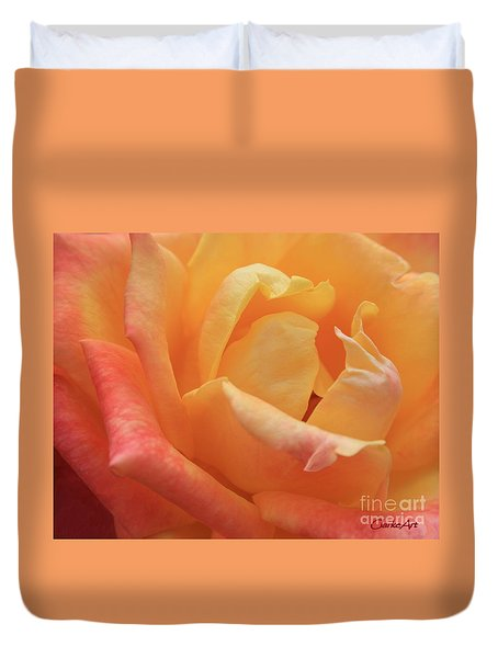 Ombre Rose Duvet Cover