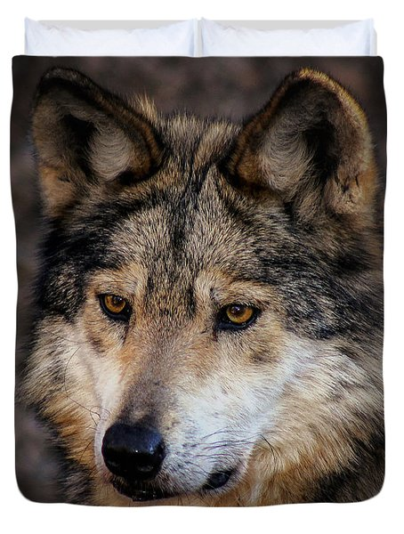 Duvet Cover featuring the photograph On Alert by Elaine Malott