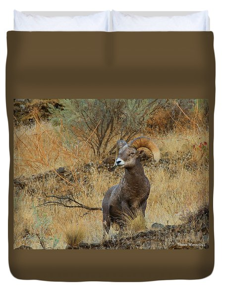 On Guard Duvet Cover by Steve Warnstaff