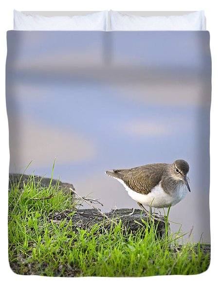 On The Banks Of The Yarkon Duvet Cover