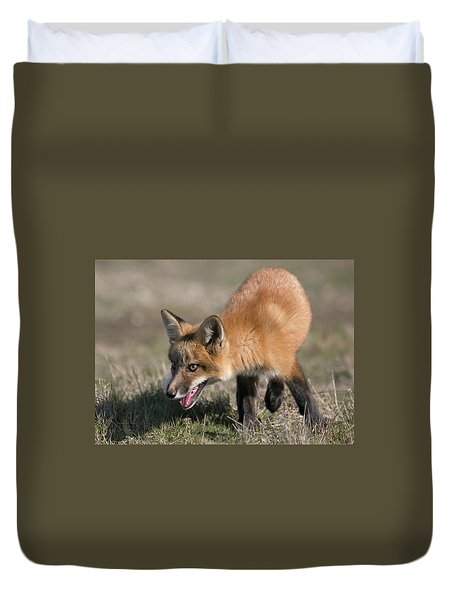 Duvet Cover featuring the photograph On The Prowl by Elvira Butler