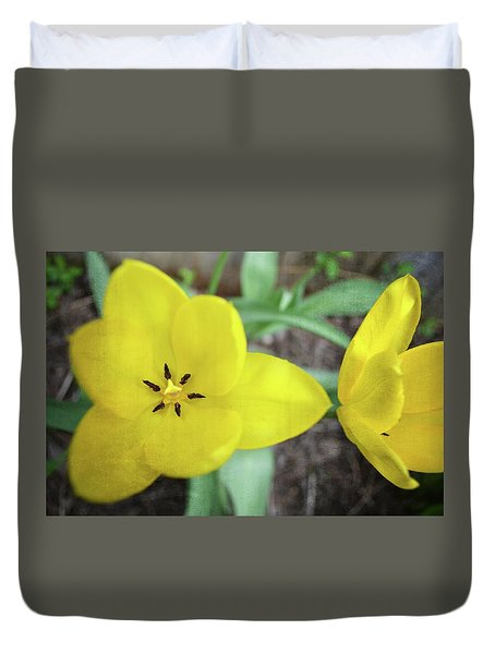 Duvet Cover featuring the photograph One And A Half Yellow Tulips by Michelle Calkins