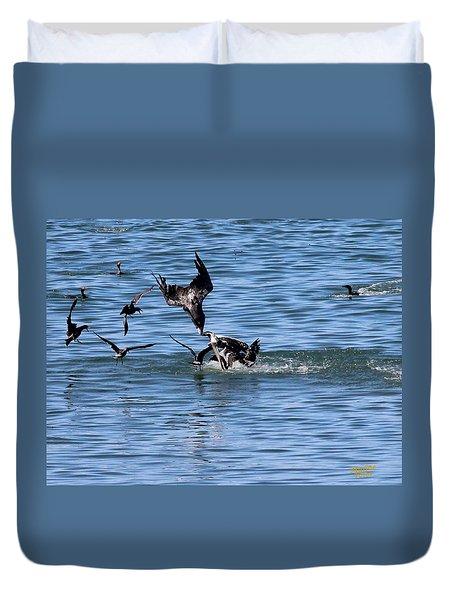 One Pelican Diving  Duvet Cover