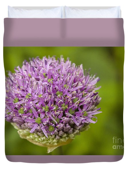 Onion Flower In Bud Duvet Cover by Patricia Hofmeester