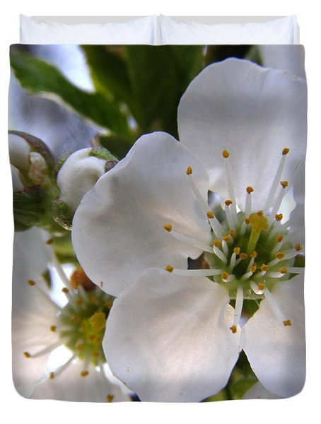 Duvet Cover featuring the photograph Opening Act -  Cherry Blossoms by Angie Rea