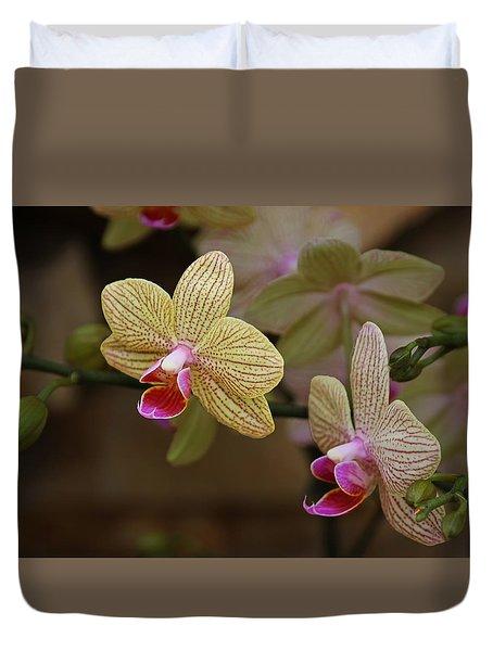 Opulent Orchids Duvet Cover
