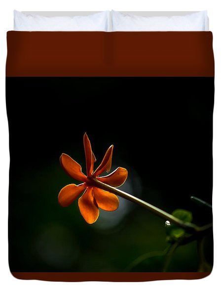 Orange And Black Duvet Cover by Ramabhadran Thirupattur