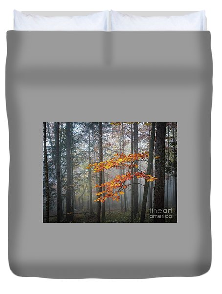 Duvet Cover featuring the photograph Orange And Grey by Elena Elisseeva