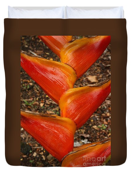 Orange And Red Haleconia Duvet Cover