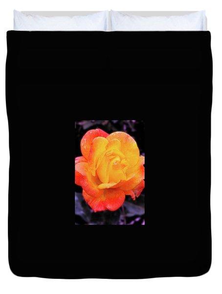 Orange And Violet Rose Duvet Cover