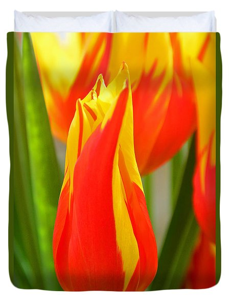 Orange And Yellow Tulips Duvet Cover by Mike Martin