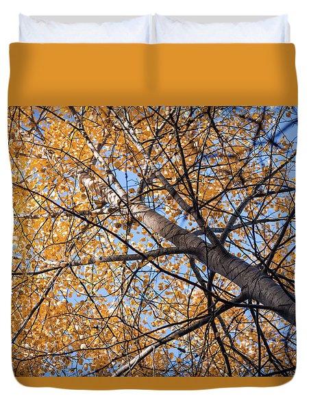 Orange Autumn Tree. Duvet Cover by Teemu Tretjakov