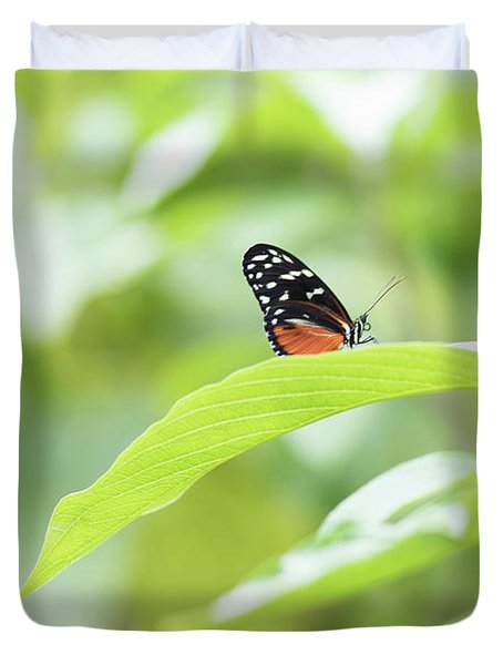 Duvet Cover featuring the photograph Orange Black Butterfly by Raphael Lopez