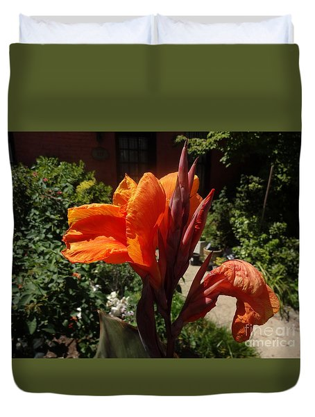 Duvet Cover featuring the photograph Orange Canna Lily by Rod Ismay