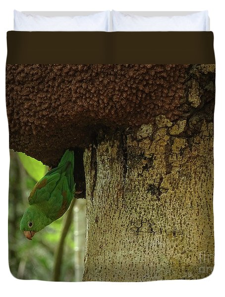 Orange -chinned Parakeet  On A Termite Mound Duvet Cover