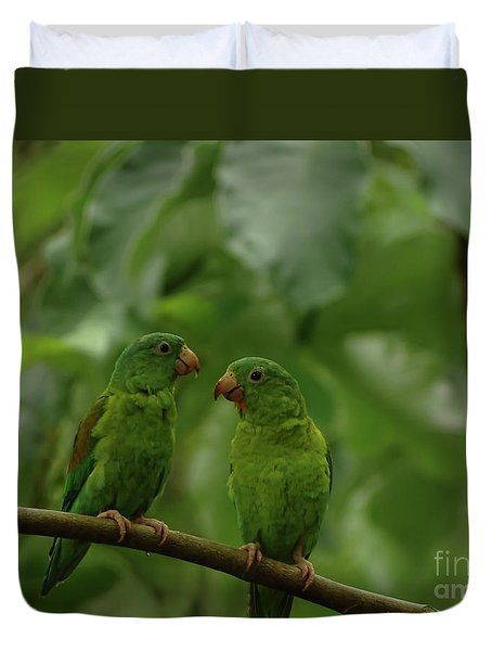 Orange-chinned Parakeets-  Duvet Cover