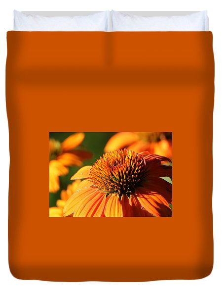 Orange Coneflower At First Light Duvet Cover