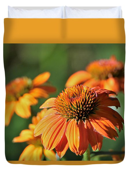 Orange Cone Flowers In Morning Light Duvet Cover