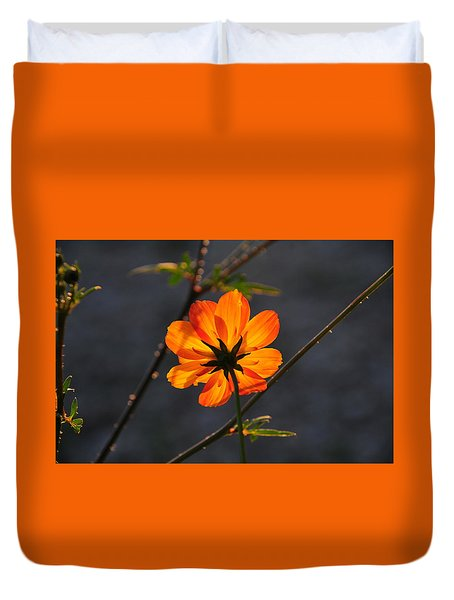Orange Cosmo Duvet Cover