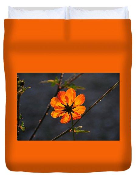 Orange Cosmo Duvet Cover