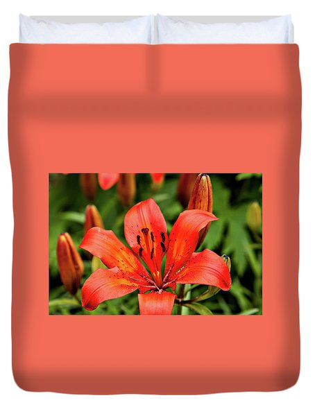Duvet Cover featuring the photograph Orange Day Lilly Single by Mary Jo Allen