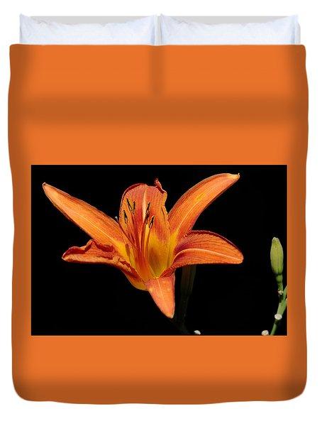Orange Day-lily Duvet Cover