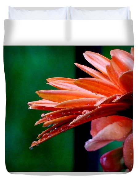 Duvet Cover featuring the photograph Orange Delight by Betty-Anne McDonald