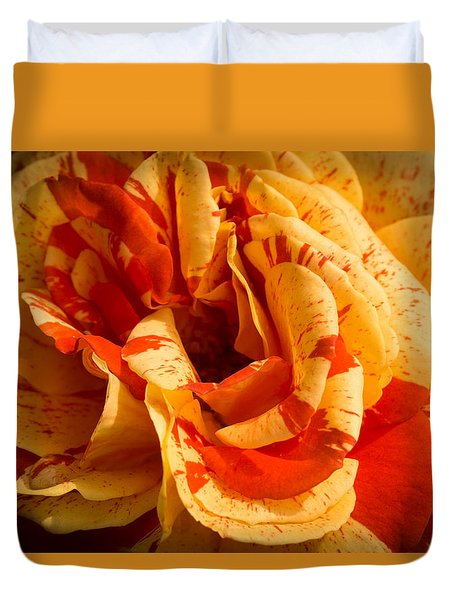 Orange Delight Duvet Cover by Cathy Donohoue