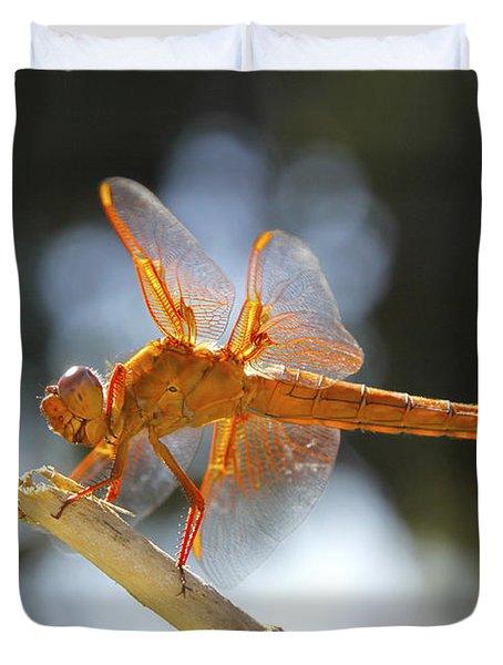 Orange Dragonfly Duvet Cover